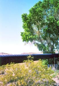BMIWaterPipeline-tree